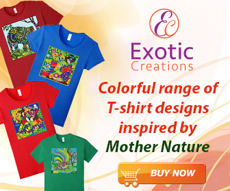 Exotic Creations Tees at Amazon